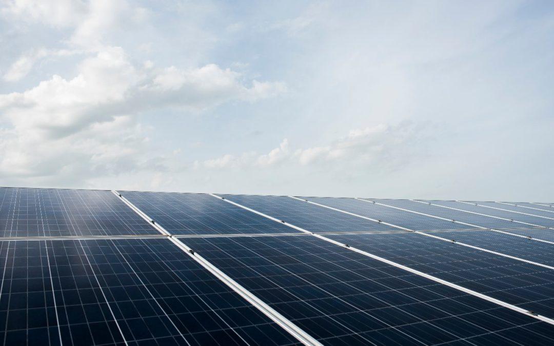 Estrenamos la planta solar fotovoltaica en Congelados Pedaneo